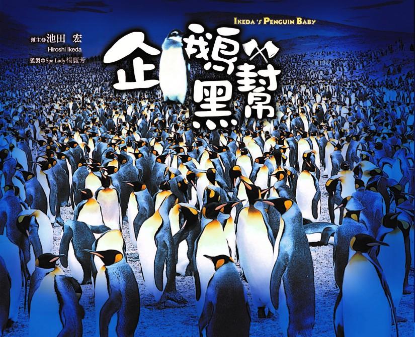 池田宏的『企鵝黑幫』 IKEDA's PENGUINBABY